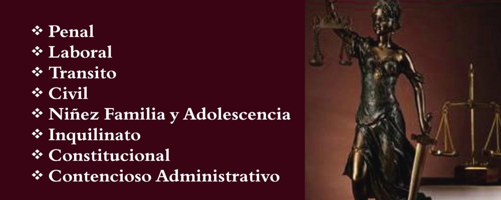 presentacion CONSORCIO JURIDICO ABOGADOS ASOCIADOS