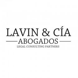Carlos Guillermo  Lavín Housset abogado