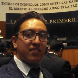 DIEGO ALBERTO MENDOZA DÍAZ abogado