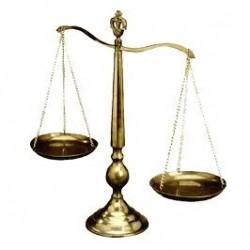 El Albero Abogados despacho abogados