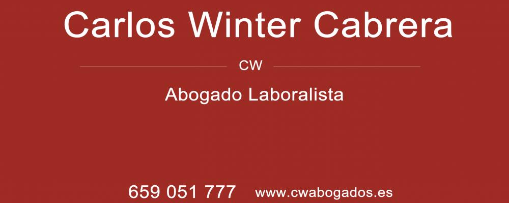 presentacion Carlos Winter Cabrera