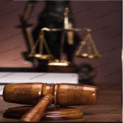 Yesenia Elizabeth Pachón Robayo abogado
